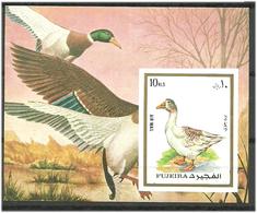 Fujeira 1972 Exotic Birds, Goose Mi Bloc 92B MNH(**) - Fujeira