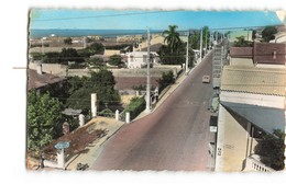 Algerie Castiglione La Route D' Alger CPSM PF Cachet Poste Aux Armées AFN 1960 - Autres Villes