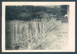 Viet Nam Tonkin Terres Rouges 1949  Protection De Village Photo 7 X 10 Cm - Lieux