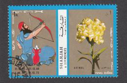 Tir à L'arc, Archery, Oeillet, Fleur, Flower, Eyelet - Tir à L'Arc