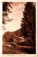5LE 318. REMIREMONT - ROUTE DE TRIANON - Remiremont