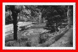 CPSM/pf (17)  SURGERES.  Les Jardins...K456 - Surgères