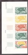 Variétés COLONIES COTE SOMALIS ESSAI Couleur Dragonnier Bande De 5 Datée - Côte Française Des Somalis (1894-1967)