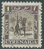 1950 CIRENAICA AMMINISTRAZIONE AUTONOMA USATO CAVALIERE SENUSSITA 1 M - RB44 - Cirenaica