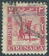 1950 CIRENAICA AMMINISTRAZIONE AUTONOMA USATO CAVALIERE SENUSSITA 2 M - RB44 - Cirenaica