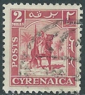 1950 CIRENAICA AMMINISTRAZIONE AUTONOMA USATO CAVALIERE SENUSSITA 2 M - RB44-2 - Cirenaica
