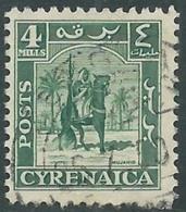 1950 CIRENAICA AMMINISTRAZIONE AUTONOMA USATO CAVALIERE SENUSSITA 4 M - RB44-2 - Cirenaica