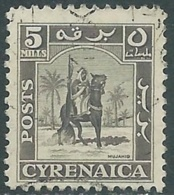 1950 CIRENAICA AMMINISTRAZIONE AUTONOMA USATO CAVALIERE SENUSSITA 5 M - RB44-2 - Cirenaica
