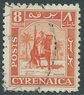 1950 CIRENAICA AMMINISTRAZIONE AUTONOMA USATO CAVALIERE SENUSSITA 8 M - RB44 - Cirenaica