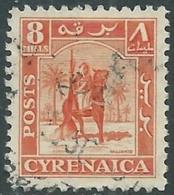 1950 CIRENAICA AMMINISTRAZIONE AUTONOMA USATO CAVALIERE SENUSSITA 8 M - RB44-2 - Cirenaica