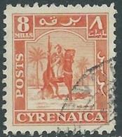 1950 CIRENAICA AMMINISTRAZIONE AUTONOMA USATO CAVALIERE SENUSSITA 8 M - RB44-3 - Cirenaica