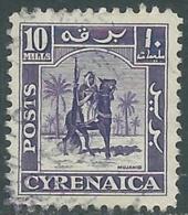 1950 CIRENAICA AMMINISTRAZIONE AUTONOMA USATO CAVALIERE SENUSSITA 10 M - RB44-3 - Cirenaica