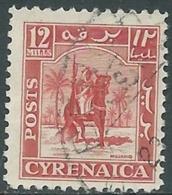 1950 CIRENAICA AMMINISTRAZIONE AUTONOMA USATO CAVALIERE SENUSSITA 12 M - RB44 - Cirenaica
