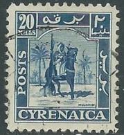 1950 CIRENAICA AMMINISTRAZIONE AUTONOMA USATO CAVALIERE SENUSSITA 20 M - RB44-2 - Cirenaica