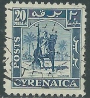 1950 CIRENAICA AMMINISTRAZIONE AUTONOMA USATO CAVALIERE SENUSSITA 20 M - RB44-3 - Cirenaica