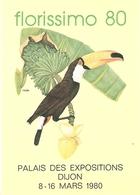 """"" TOUCAN-TOCO """"  ORIGINE BRESIL . DESSIN Colette THURILLET  . CARTE EXPO FLORISSIMO DIJON 1980 - Oiseaux"