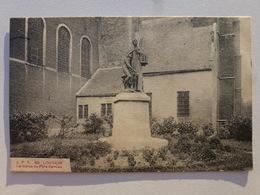 LOUVAIN  Carte Rare En Très Bel état - La Statue Du Père Damien  DEN1071 - Belgique