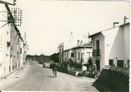 Canohès  Route De Perpignan  Cpsm Format 10-15 - Francia