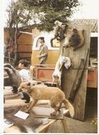 """Mr ROUCHE  """""""" TAXIDERMISTE """""""" Photo De E.QUENTIN 1986 . - Animaux & Faune"""