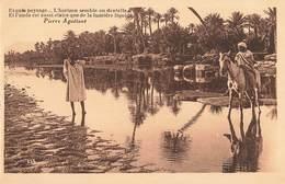Algerie Texte Pierre Aguetant Exquis Paysage , Riviere Du Sud - Algérie