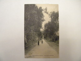 Philippeville - Route De Saint Antoine  - (121) - Skikda (Philippeville)