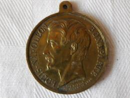 Médaille De La Captivité De Louis Napoléon Bonaparte - Medals