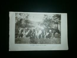MEERLE. Melken Op De Weide - Historische Dokumente