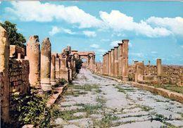 1 AK Algerien * Die Antike Stadt Timgad - Sie Gehört Seit 1982 Zum UNESCO Weltkulturerbe * - Algerien