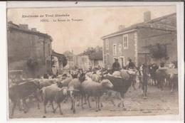 54 Foug Environs De Toul Illustrés Le Retour Du Troupeau Moutons Chevres Goat ( - Foug