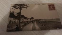 CPA -112. Cannes - Le Boulevard Du Midi - Cannes