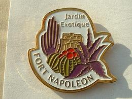 PIN'S JARDIN EXOTIQUE - FORT NAPOLEON - ILES DES SAINTES - GUADELOUPE - CACTUS - Städte
