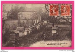 CPA (RÉF : Z35) RUCHER DE Mr AUGERAUD VALENTIN APICULTEUR à SIREUIL (charente) - France