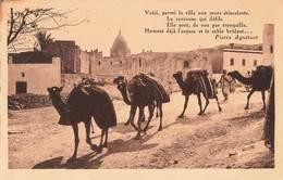 Algerie Texte Pierre Aguetant Une Caravane Traversant Un Village Du Sud , Voici Parmi La Ville Aux Murs Etincelants ... - Algérie