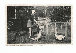 Photo Originale JEUNE FEMME Avec OIE CANARD   SEPTEMBRE 1941 - Personnes Anonymes