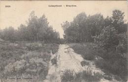 Calmpthout ,  Kalmthout , Bruyères ,( F.Hoelen , Cappellen ,n° 3925 ) - Kalmthout