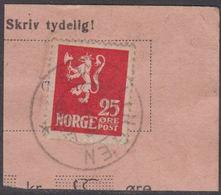 1923. Lion.__ 25 øre Red. LUXUS SVELLINGEN 23X 28. (Michel 107) - JF318098 - Gebraucht