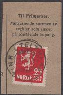 1923. Lion.__ 25 øre Red. LUXUS TINN I TELEMARK 30. XII. 26. (Michel 107) - JF318115 - Gebraucht