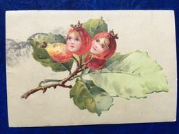 """Cpa--""""La Naissance Immaginaire Du Fruit De L'arbre'""""--(my Ref 200)-1911 - Illustrateurs & Photographes"""