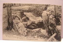 CPA 60 OISE CONGRES PREHISTORIQUE BEAUVAIS 1909 DOLMEN DE CHAMPIGNOLLES 481 - Beauvais