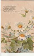 ***  FLEURS  *** MARGUERITE  Par Illustrateur Et Poème Paul Hemmier - TTB Timbrée - Flowers