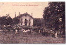 Meurthe Et Moselle : Malzéville : A La Gueule Du Loup - France