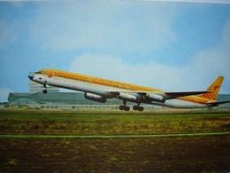 Avion / Airplane / SURINAM AIRWAYS / Douglas DC-8 - 1946-....: Ere Moderne