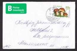Iceland: Economy Cover, 2012, 1 Stamp, Mushroom, Fungus, Rare Label B Domestic Mail EBL 651 (minor Damage) - 1944-... Republic