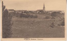 Noiseux - Panorama - Edit. Taziaux-Charlier - Somme-Leuze
