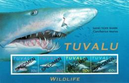 Tuvalu 2000 Sand Tiger Shark SPECIMEN Minisheet MNH - Tuvalu