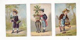 Lot De 3 Chromos   Sans Pub   Jardinier, Herboriste, Horticulteur     Petit Format   5.8 X 3.7 Cm - Chromos