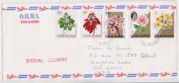 Lettre Îles Cook Islands Rarotonga Timbre Fleurs Flower Stamp Mail Cover To Crystal Lake Illinois 1973 - Pflanzen Und Botanik