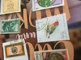 CUBA UCCELLI - Stamps