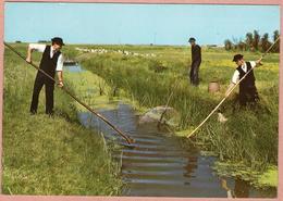 85 / Lot De 2 : Pays Maraichin - Folklore - Pêche à L'anguille + Promenade En Barque - Francia