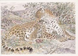 SSSR / RUSSIA - Animals, Mammals, Panthera Pardus Ciscaucasica, Advertising Postcard - Katten